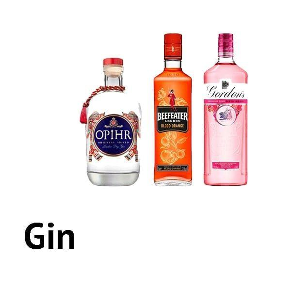 Spirits - Gins