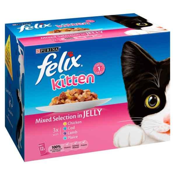 Felix Kitten Cat Food Mixed Selection in Jelly 12 x 100g