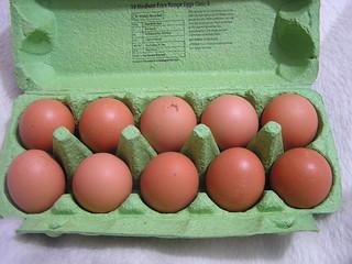 10 PACK Eggs